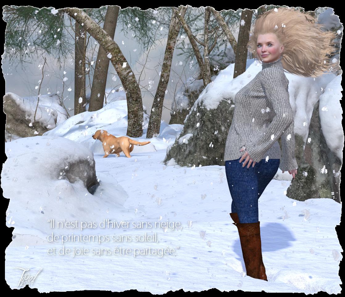 carte snowF